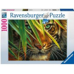 Ravensburger RAVEN. 1000 EL. Tajemnic zy Tygrys