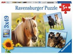 Ravensburger Puzzle 3x49 elementów - Kochane konie