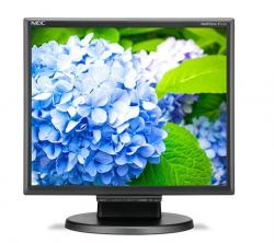 Monitor 17 cali LCD MS E172M bk DVI 1280x1024, HDMI, VGA