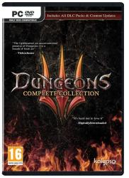 Gra PC Dungeons 3 Complete Collection